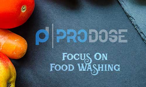 Focus on Food Washing